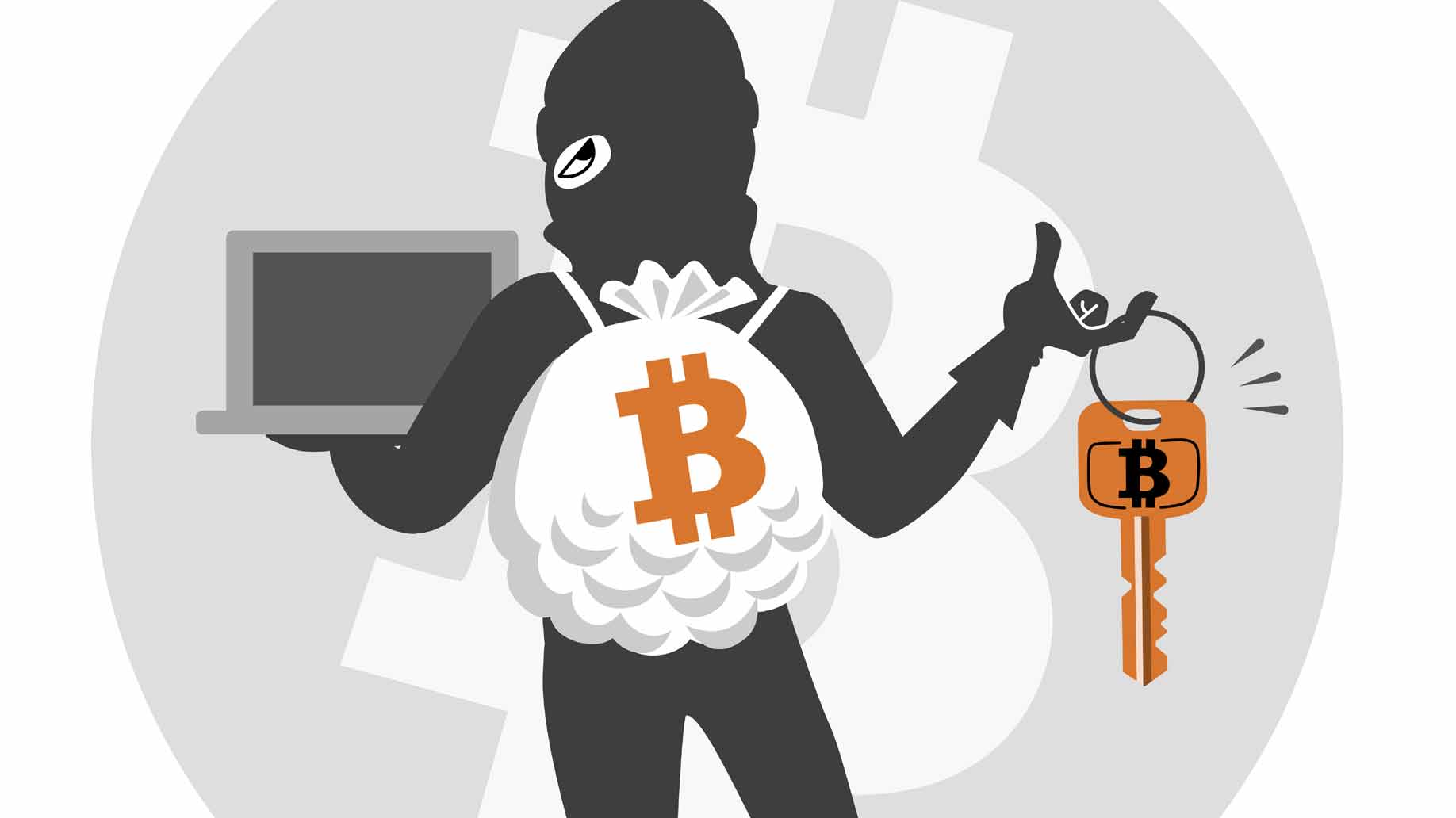 bitcoin thief hacker
