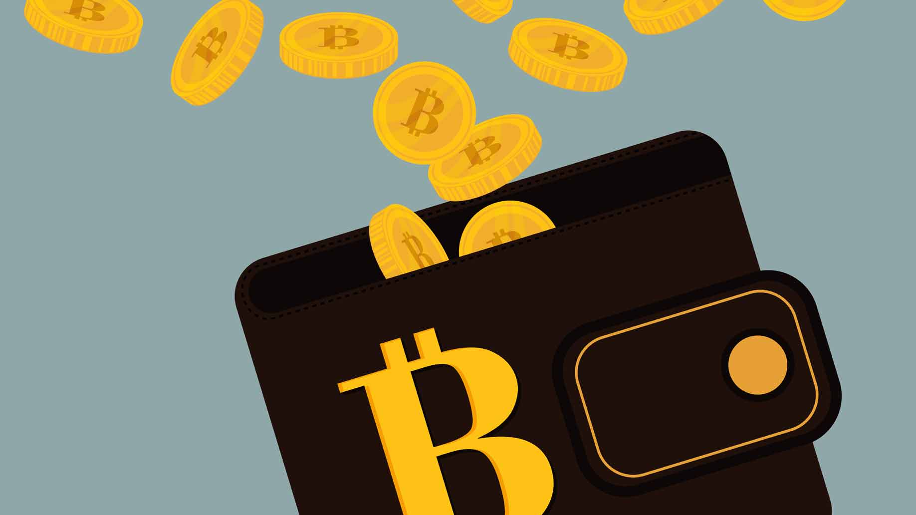 Bitcoin Kryptowährung virtuelle Geldbörse